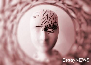 Neuroscience and Music Education